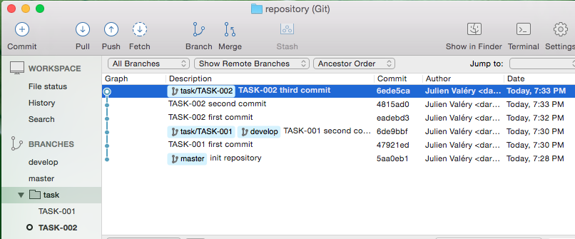 Git repository example with source tree